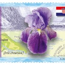 t3_ Flori simbol de tara
